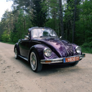 Volkswagen Beetle 1983 Benzinas